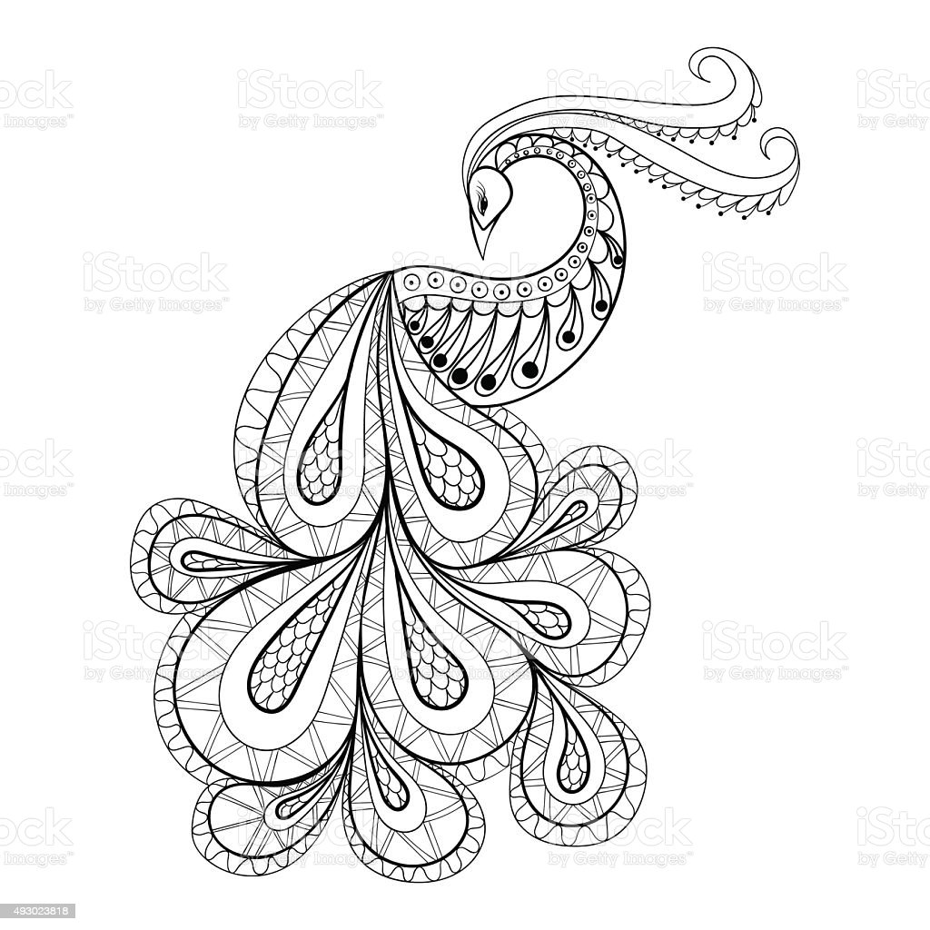 Hand drawn peacock  for antistress Coloring Page with high detai vector art illustration