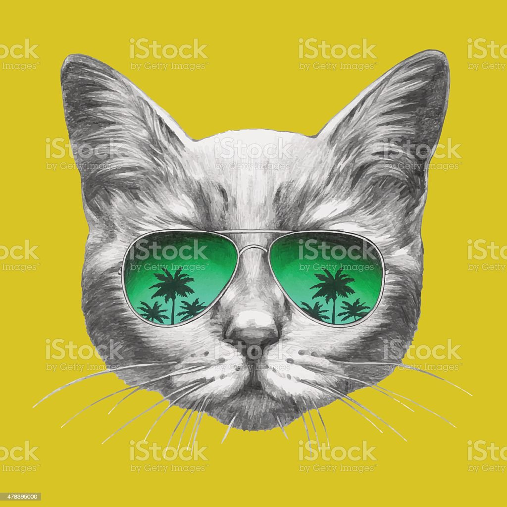 Hand drawn portrait of Cat with mirror sunglasses. vector art illustration