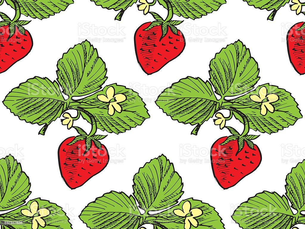 hand drawn red Strawberry pattern vector illustration vector art illustration