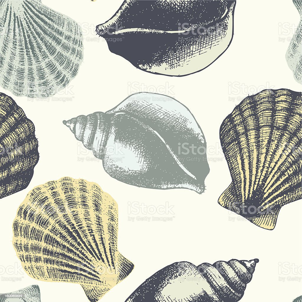 Hand drawn seamless pattern with sea shell. royalty-free stock vector art