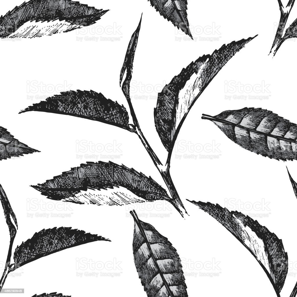 hand drawn seamless pattern with tea leafs vector art illustration