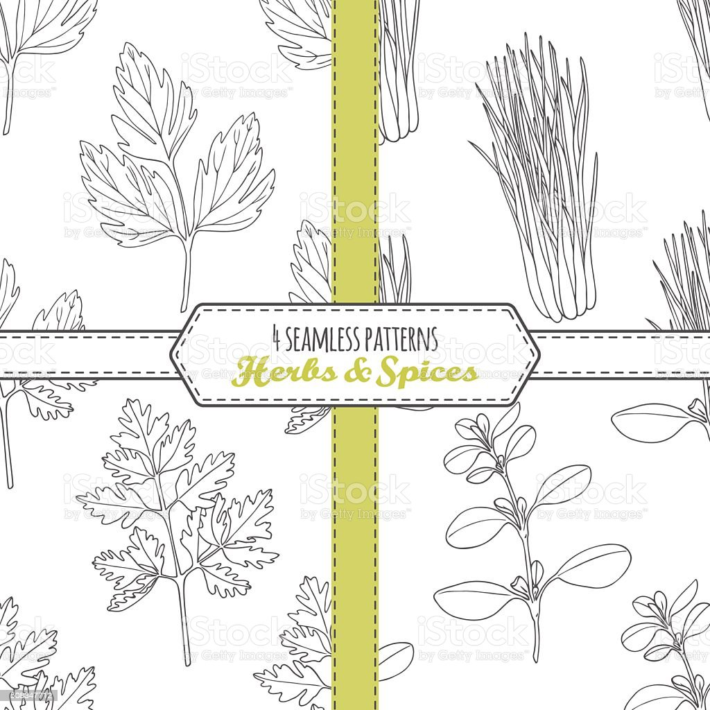 Hand drawn seamless patterns collection with lovage, lemongrass, chervil, marjoram vector art illustration