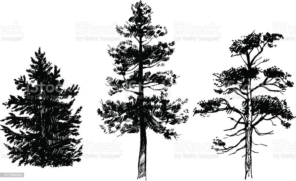 Hand drawn set of trees vector art illustration