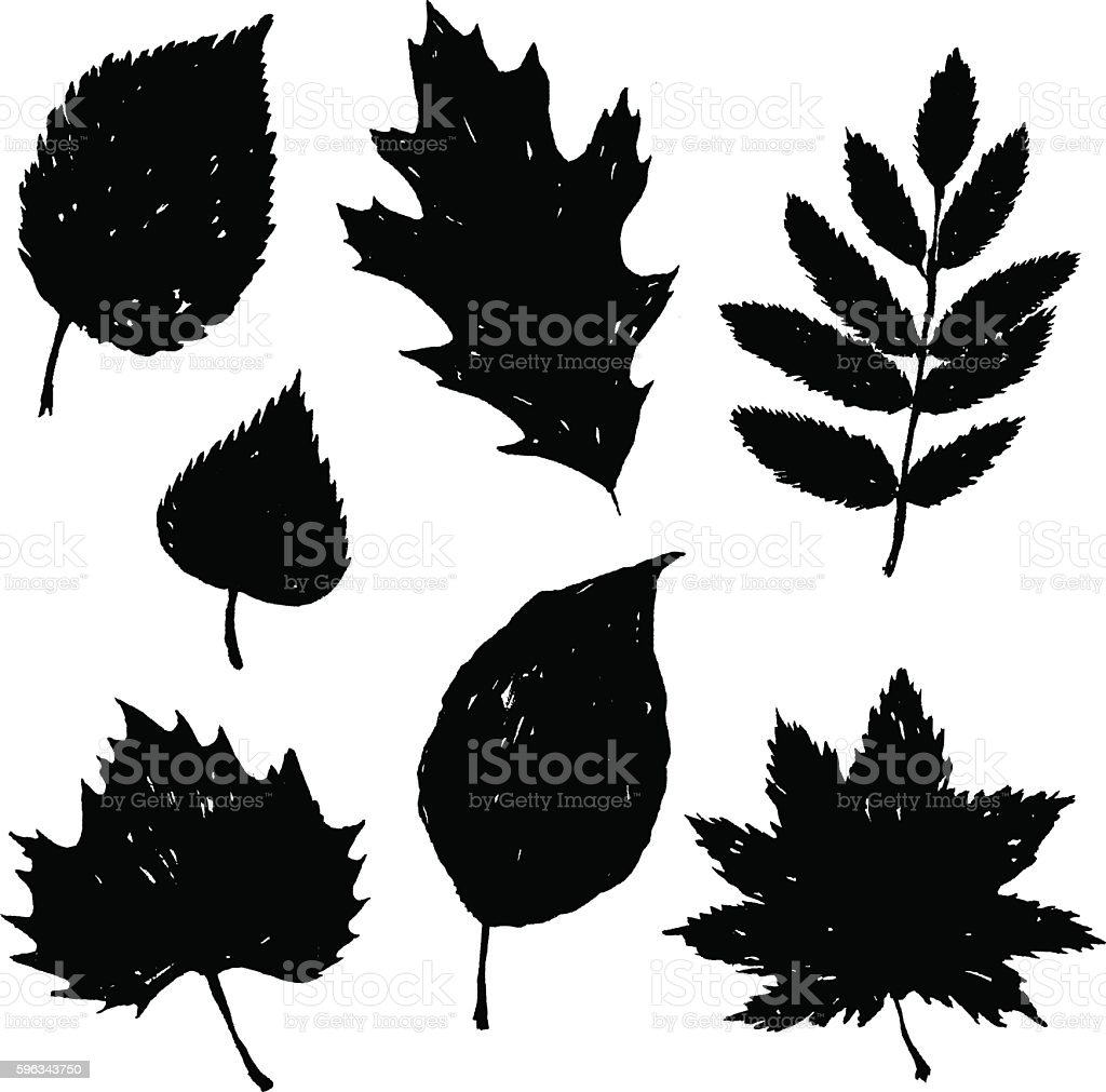 Hand drawn silhouette of leaves vector set vector art illustration