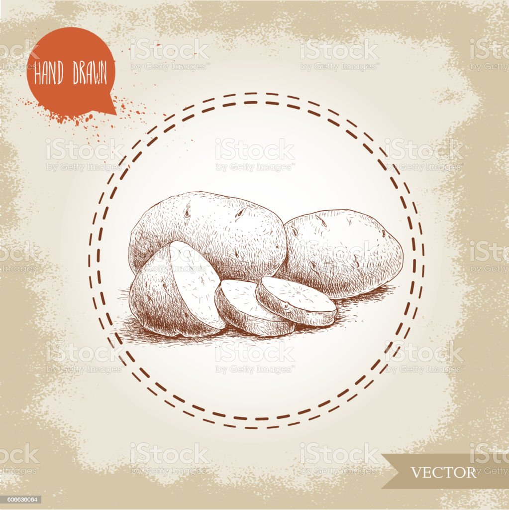 Hand drawn sketch style illustration of ripe potatoesand slices vector art illustration