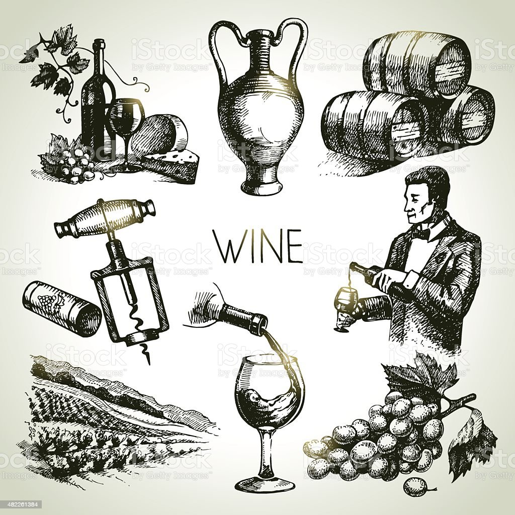 Hand drawn sketch vector wine set vector art illustration