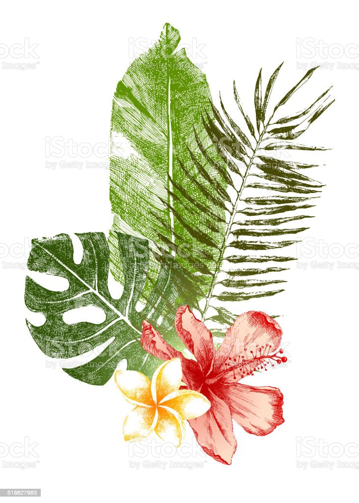 hand drawn tropical leaves and flowers vector art illustration