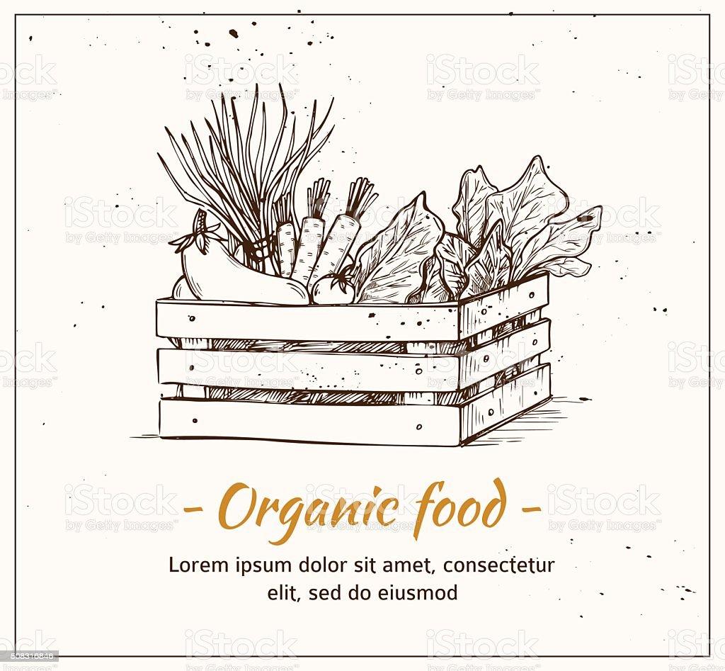 Hand drawn vector illustration - Fresh vegetables. Supermarket. vector art illustration