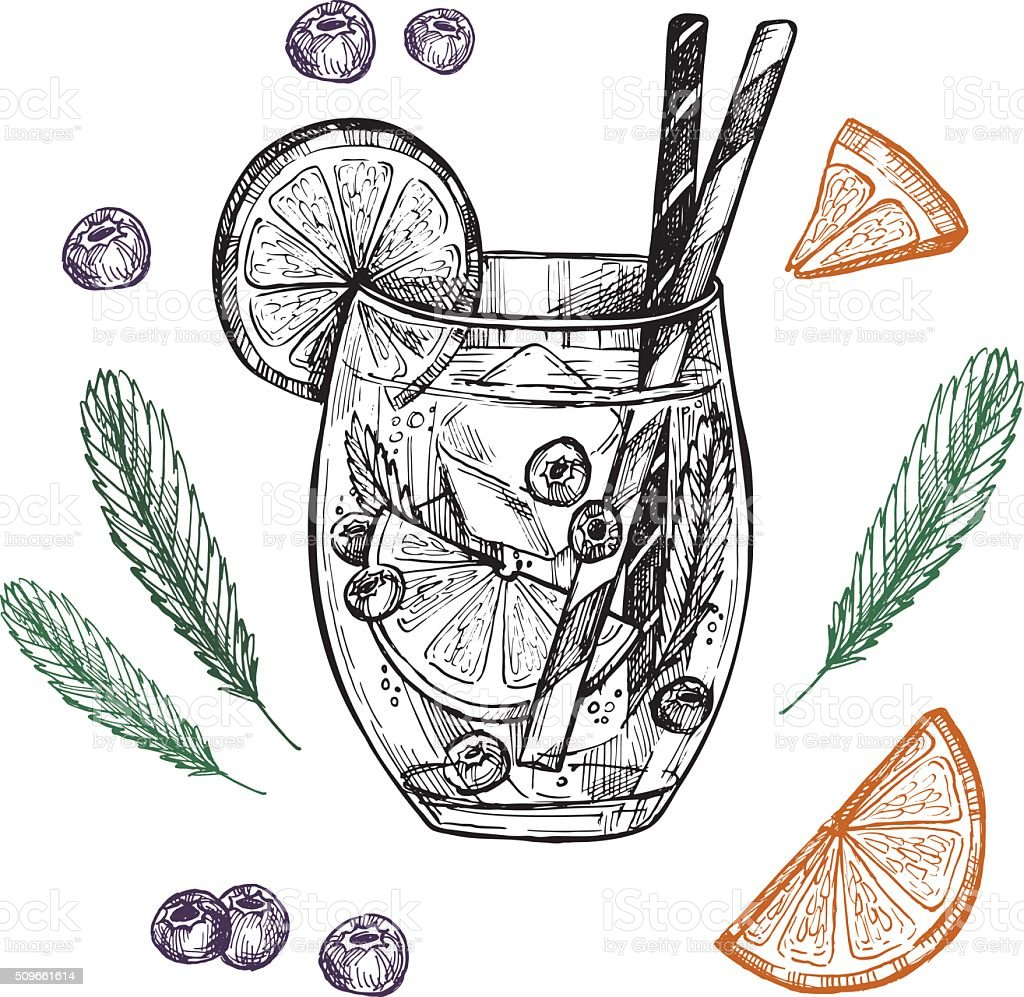 Hand drawn vector illustration - Lemonade with blueberry, mint vector art illustration