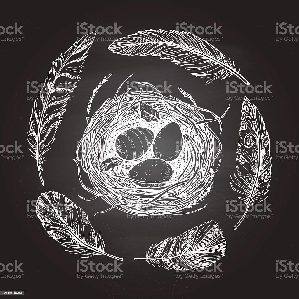 Hand drawn vector illustration - nest with Easter eggs vector art illustration