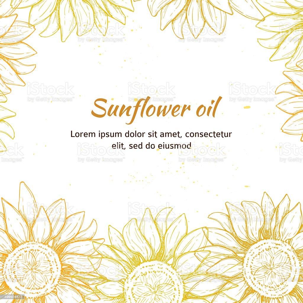 Hand drawn vector illustration - Sunflowers background. Vintage vector art illustration