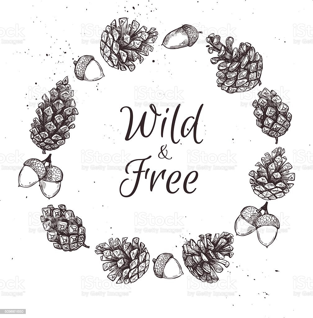Hand drawn vector illustrations. Wreath with pine cones. Forest vector art illustration