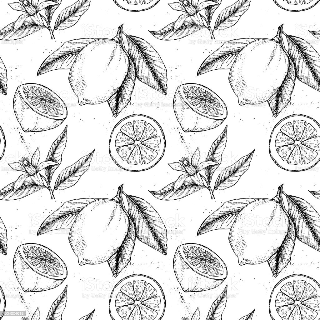 Hand drawn vector seamless pattern. Collections of Lemons. vector art illustration