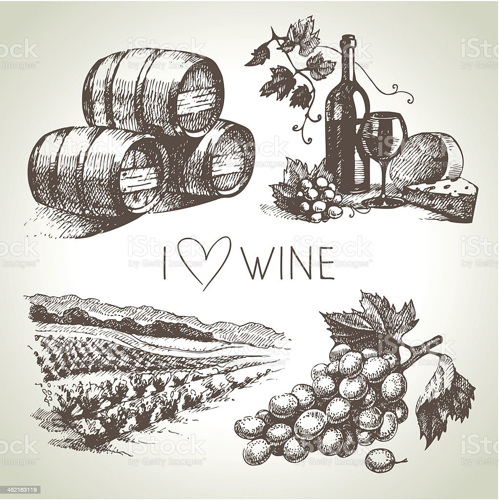 Hand drawn vector wine set vector art illustration