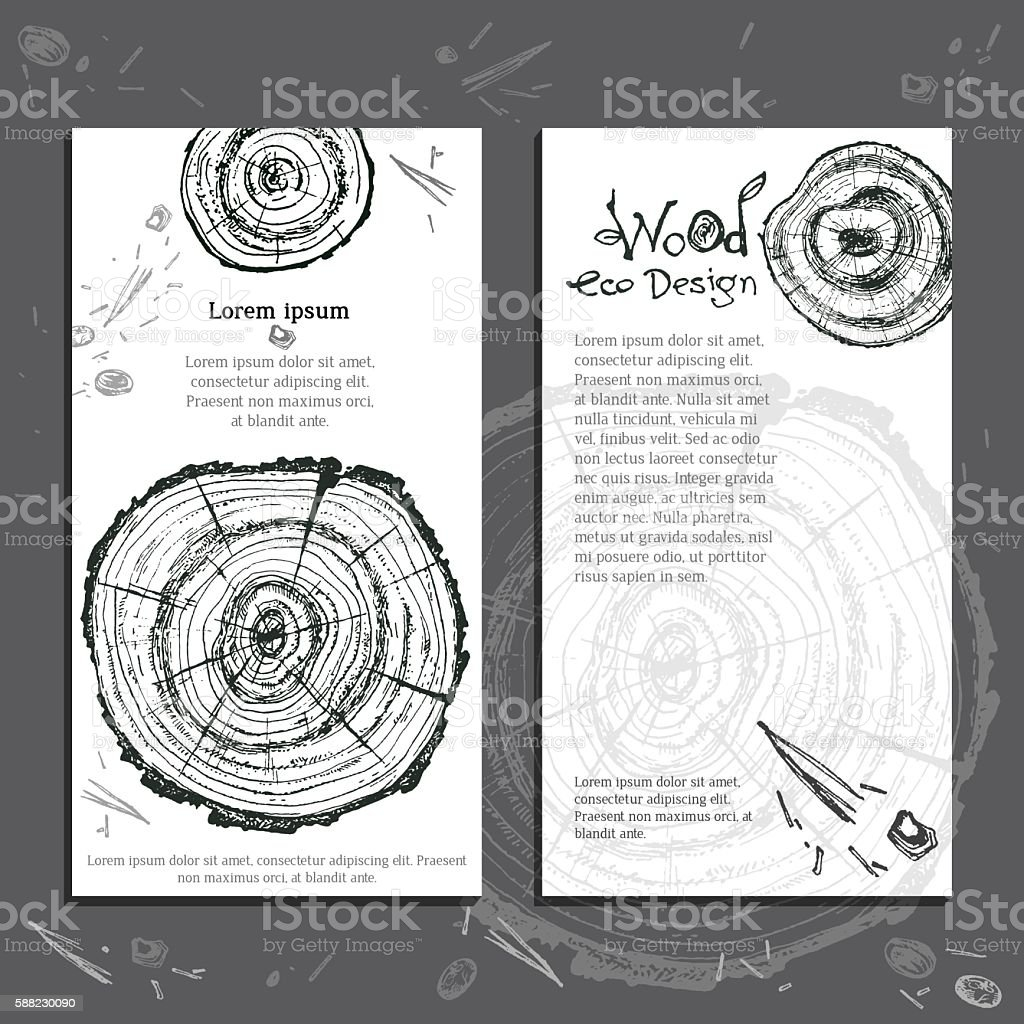 Hand drawn vector wooden slice. Pine tree. Organic modern ecolog vector art illustration