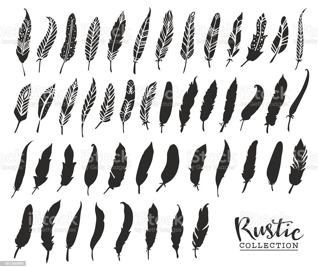 Hand drawn vintage feathers. Rustic decorative vector vector art illustration