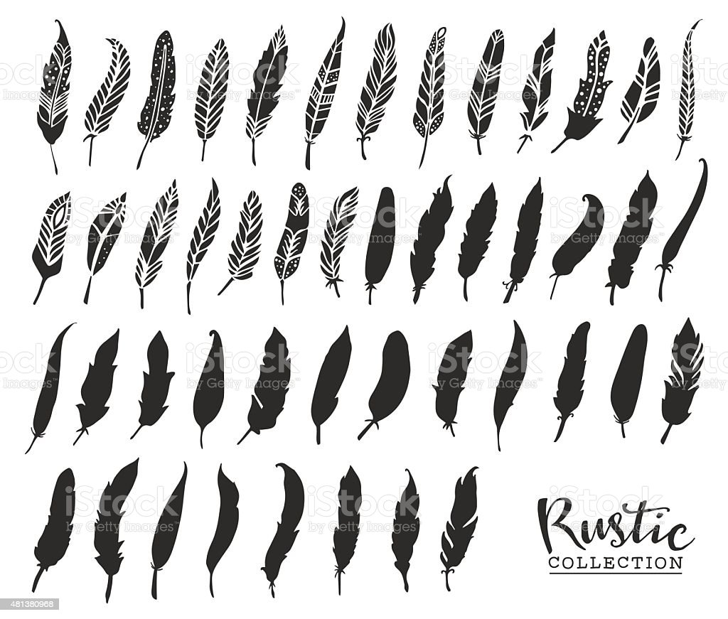 Hand drawn vintage feathers. Rustic decorative vector vector art illustration