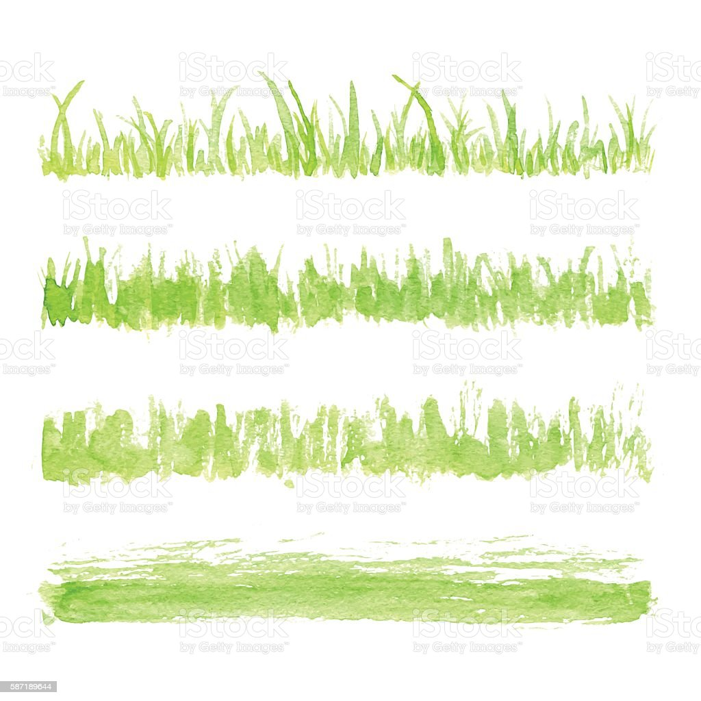 Hand drawn watercolor grass set isolated on white background. Sketch...
