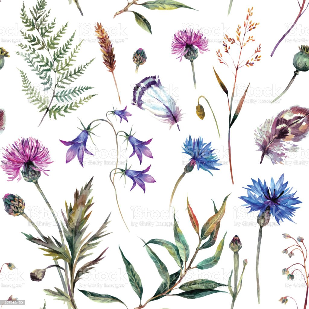 Hand drawn watercolor wildflowers vector art illustration