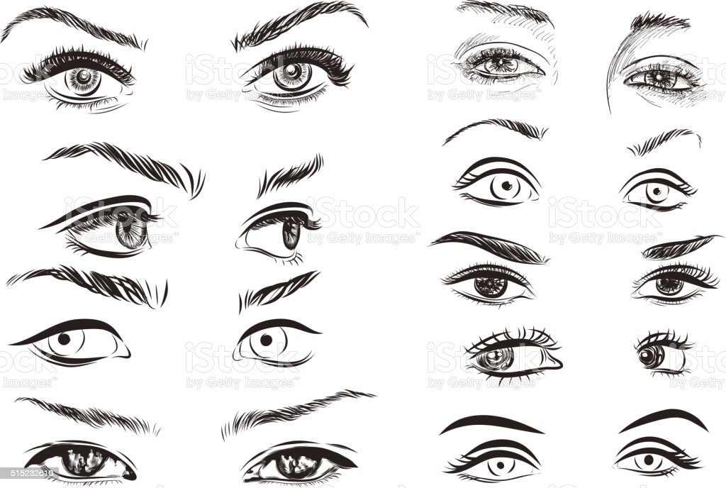 hand drawn woman eyes collection on white background. Vector vector art illustration