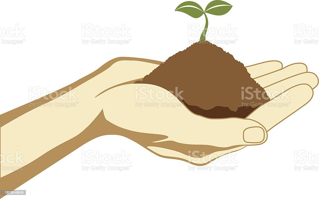 Hand Holding The Seed vector art illustration
