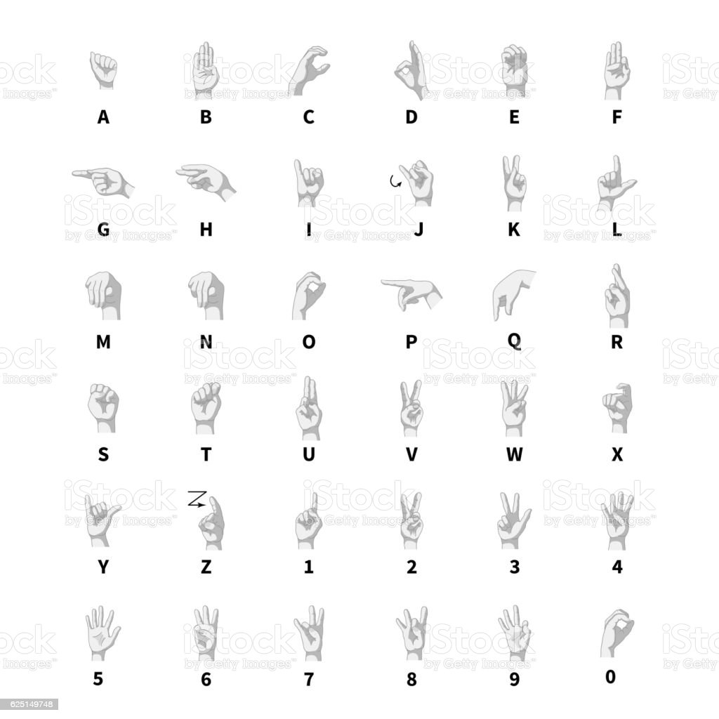 Hand language interpreter, latin alphabet on white vector art illustration