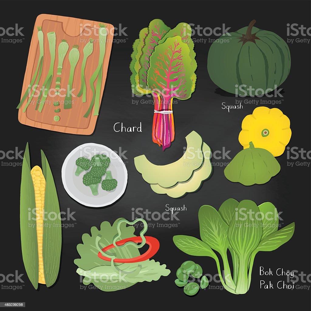 Handdrawn vegetable illustrations set for your design. vector art illustration