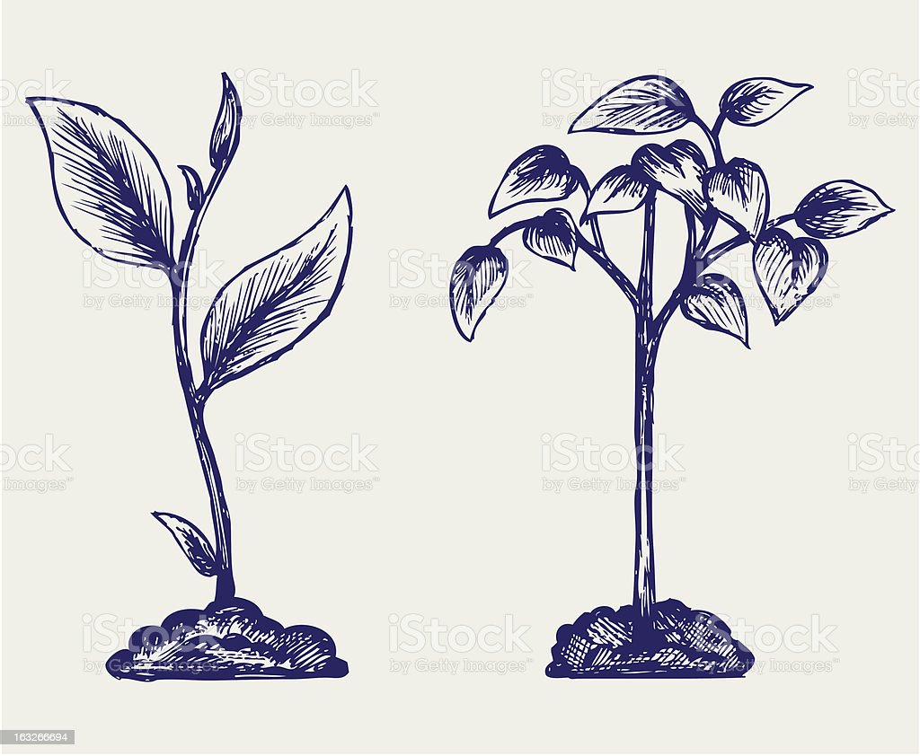 Handful of the ground and plant royalty-free stock vector art