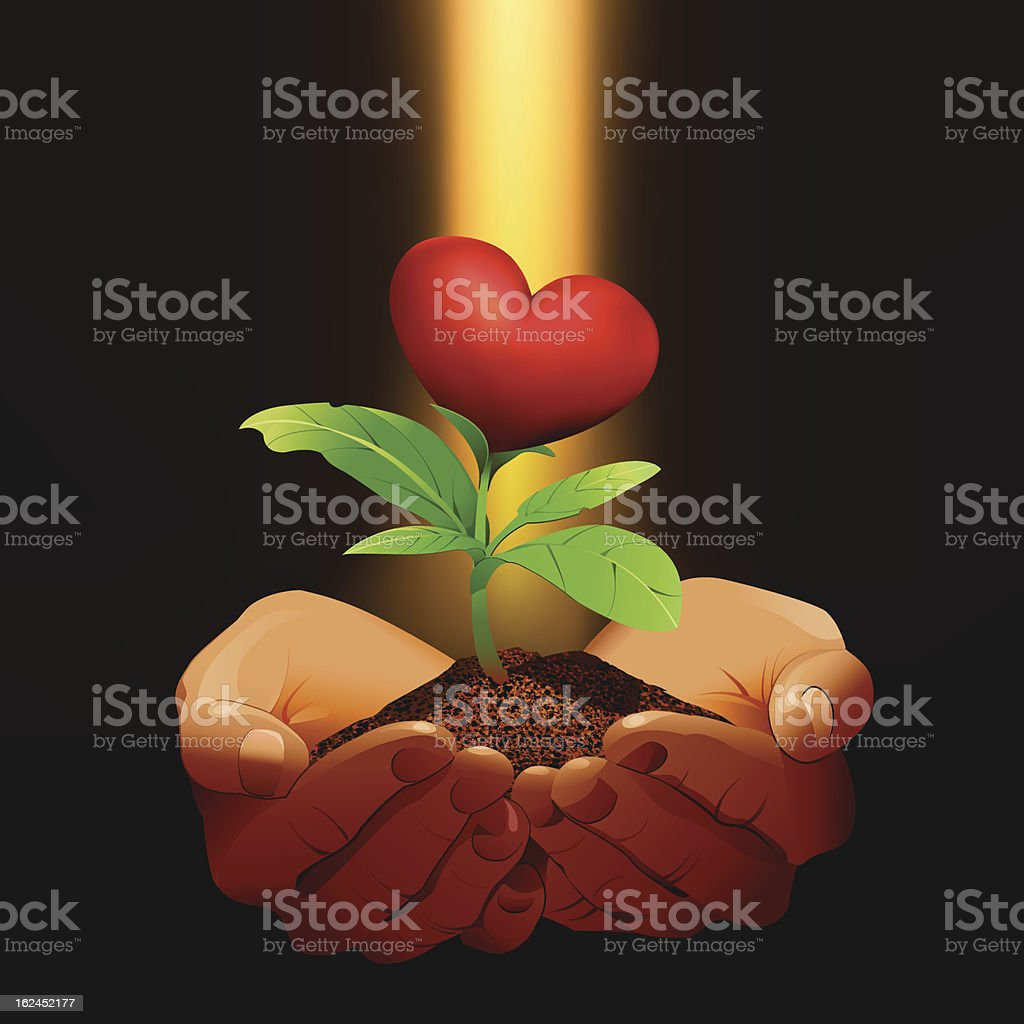 Hands holding a small red heart tree. royalty-free stock vector art