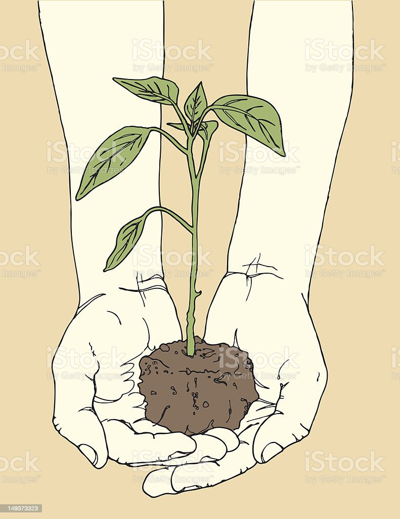 Hands Holding Plant royalty-free stock vector art