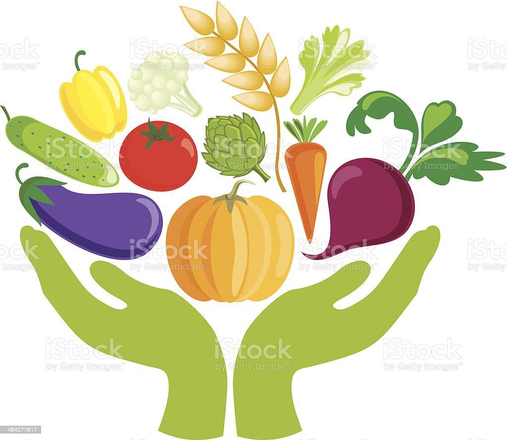 Hands with vegetables vector art illustration