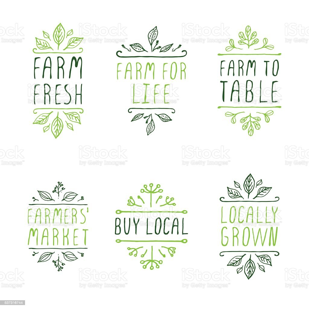 Hand-sketched typographic elements. Farm product labels. vector art illustration