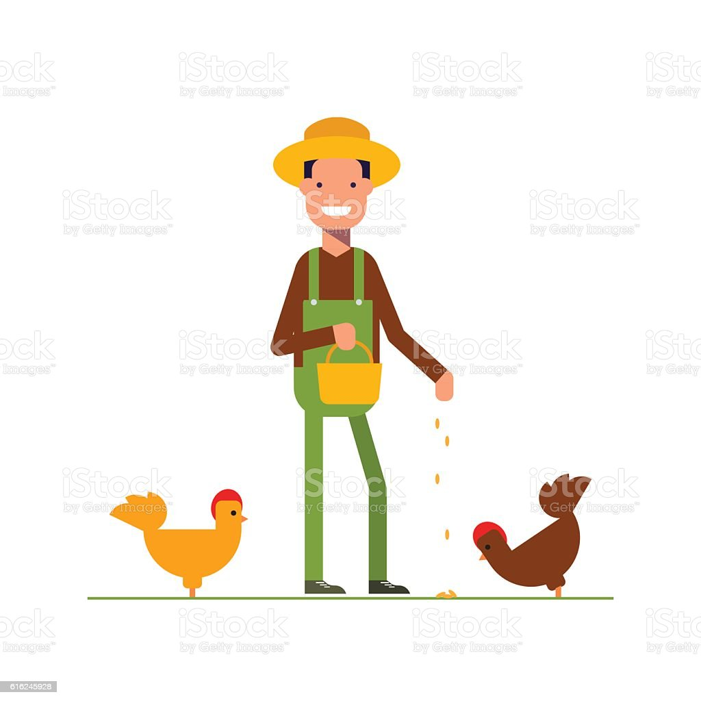 Happy farmer in a straw hat feeds the chickens. The vector art illustration