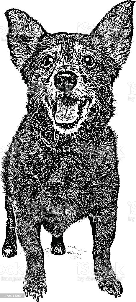 Happy, healthy Old Dog vector art illustration