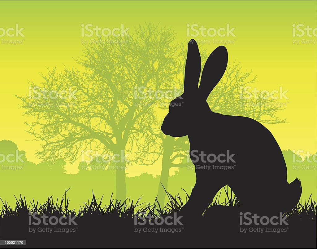 Hare silhouette on grass royalty-free stock vector art