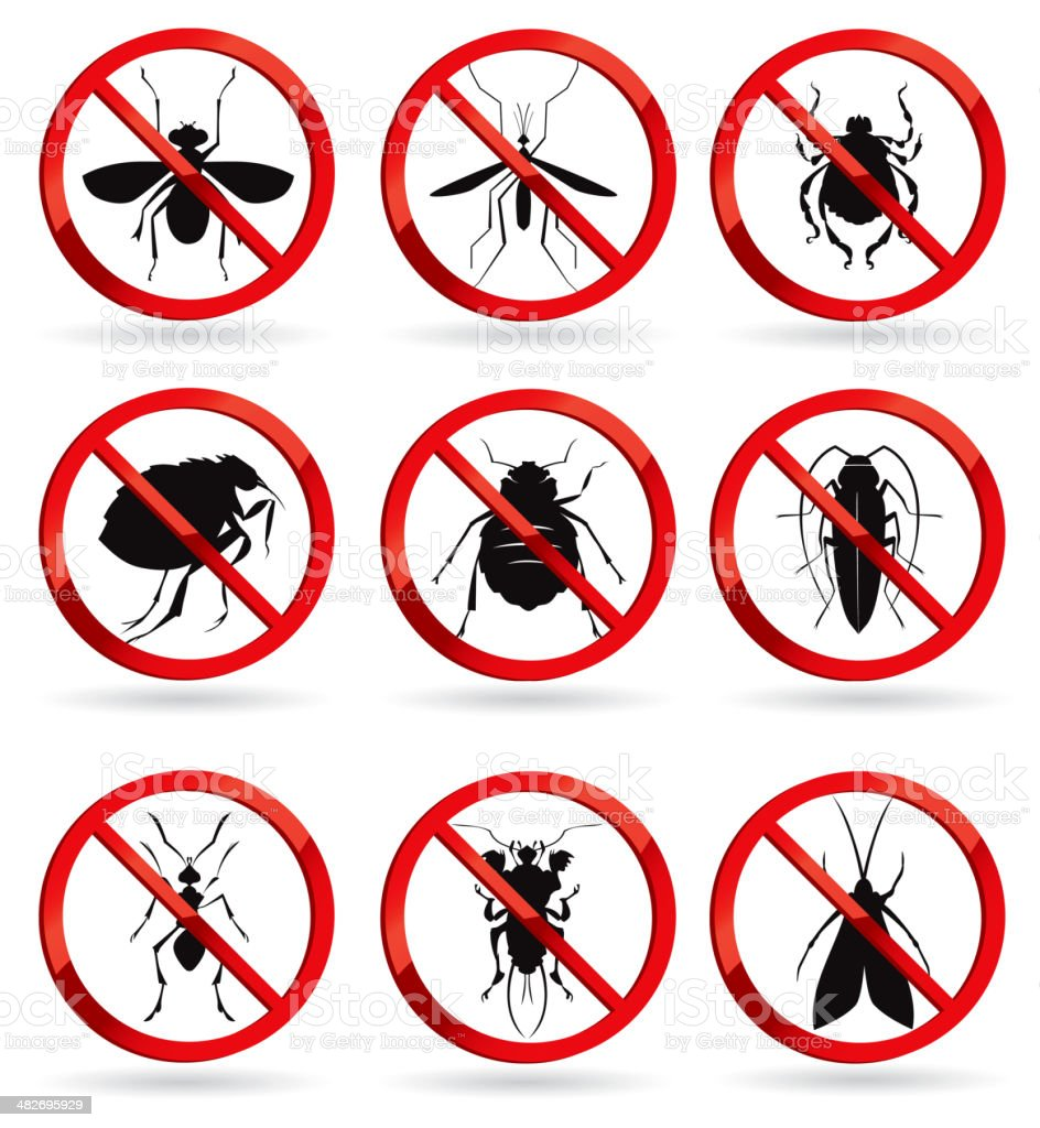 harmful insects vector art illustration