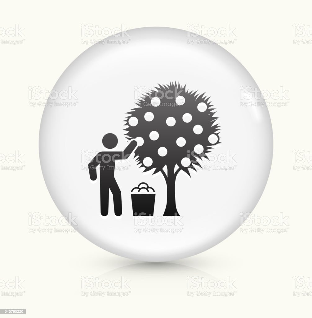 Harvest icon on white round vector button vector art illustration