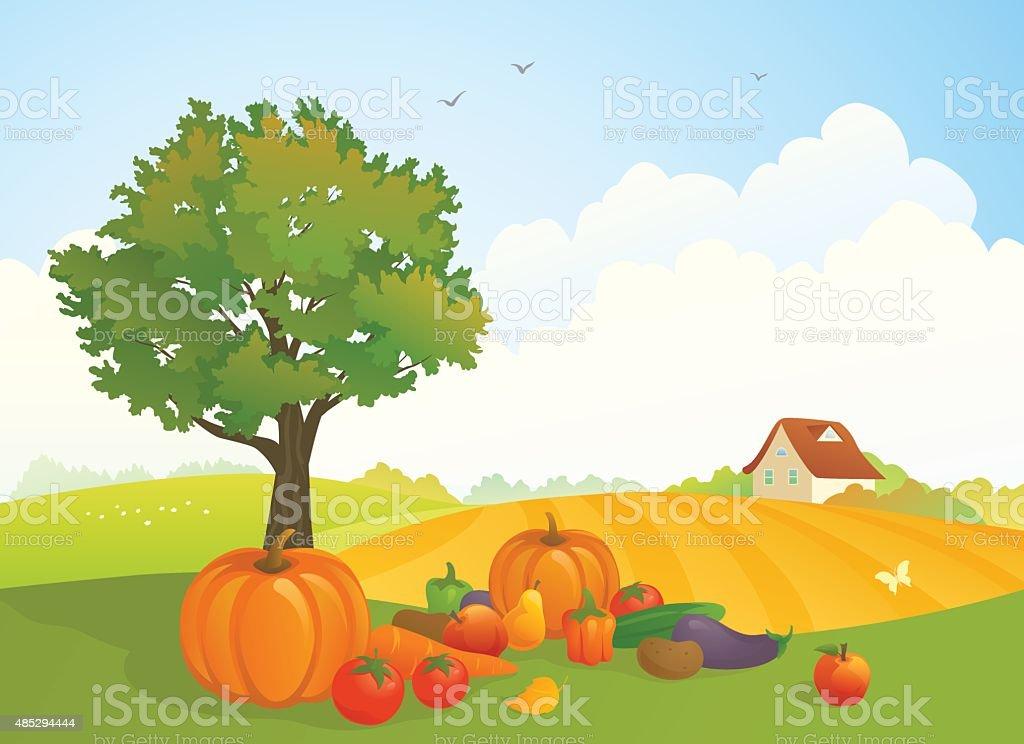 Harvest landscape vector art illustration