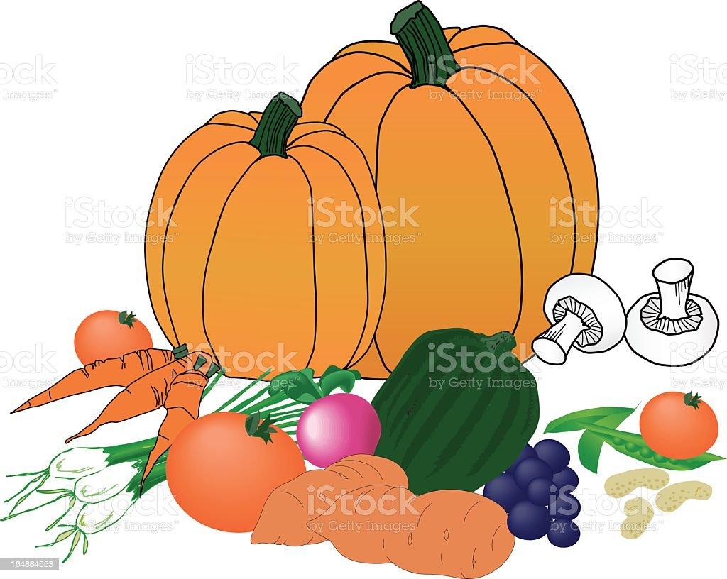 Harvest Vegetables royalty-free stock vector art