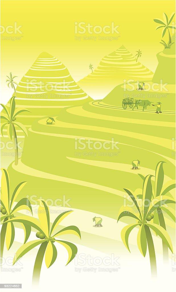Harvesting Rice vector art illustration