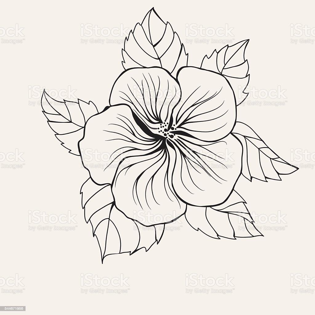 hawaï fleur dhibiscus feuille pour la page de livre de coloriage