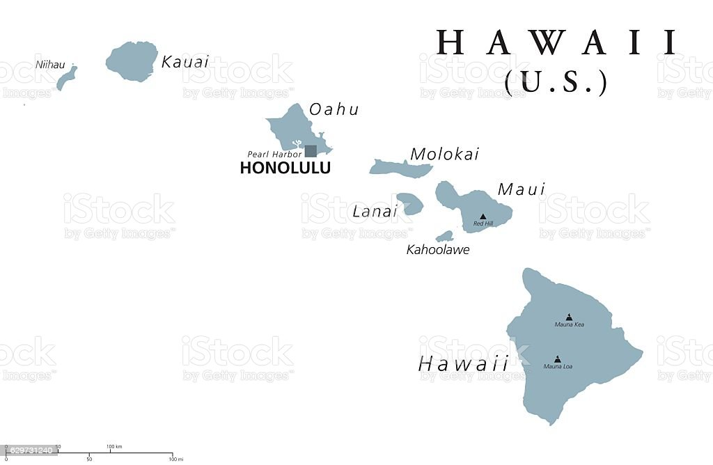 Hawaii political map vector art illustration