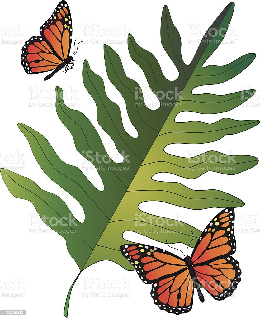 Hawaiian fern and monarch butterflies vector art illustration