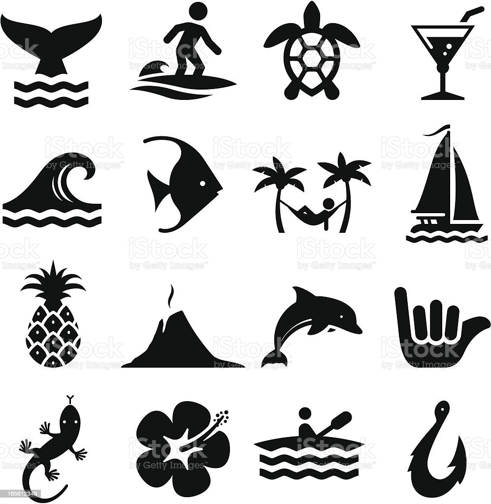 Hawaiian Icons - Black Series vector art illustration