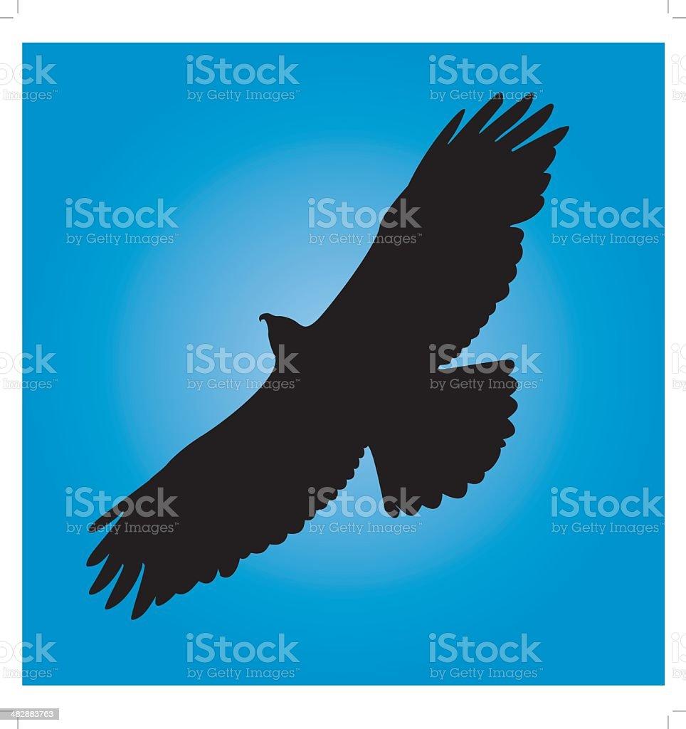 Hawk In Flight royalty-free stock vector art