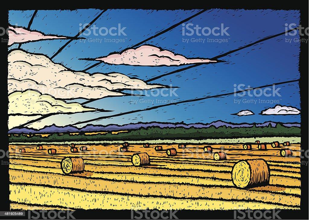 Hay Field vector art illustration