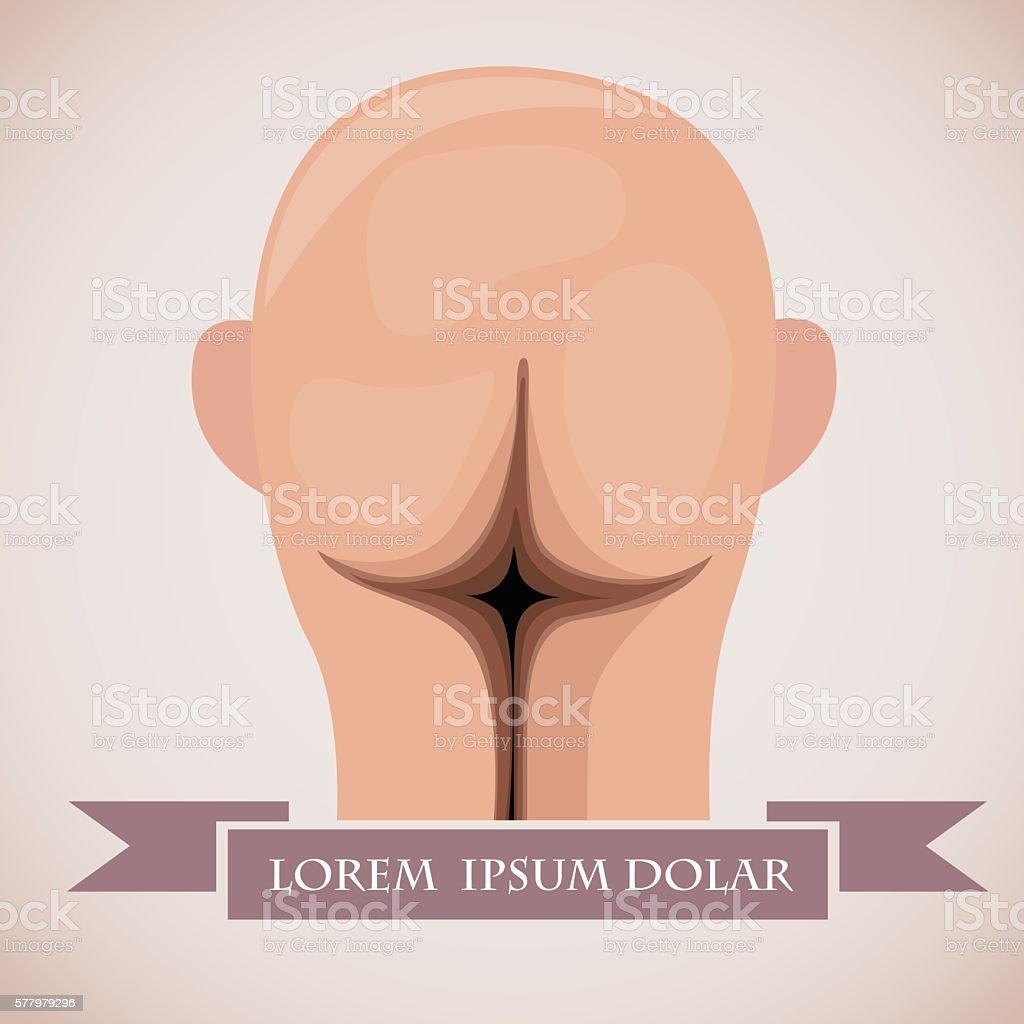 Head like ass vector art illustration