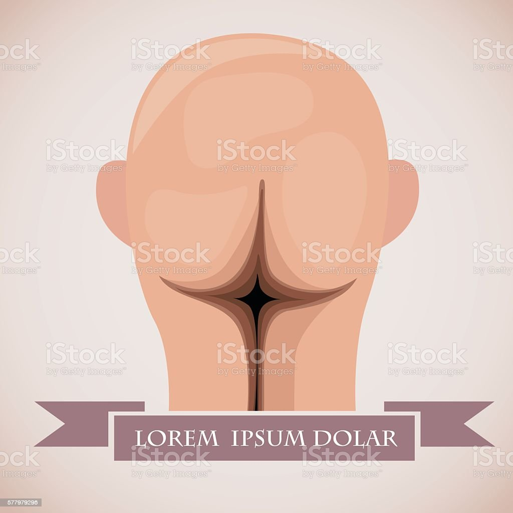 Head like ass vector art illustration