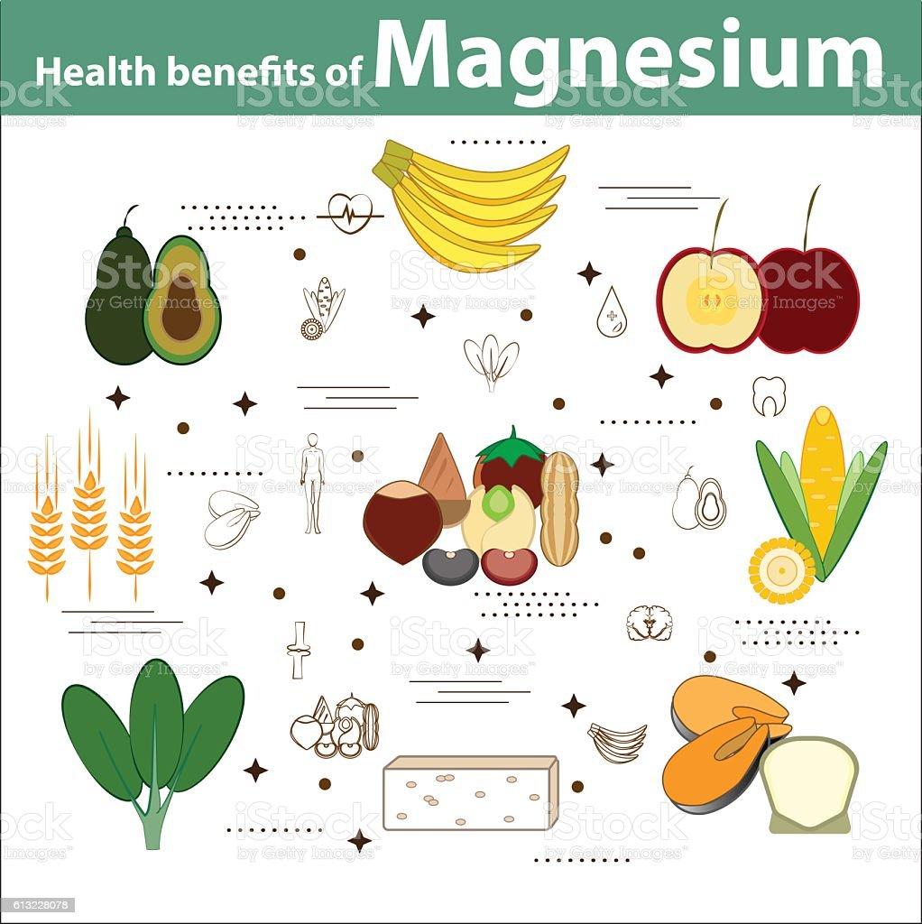 Health benefits of Magnessium vector art illustration