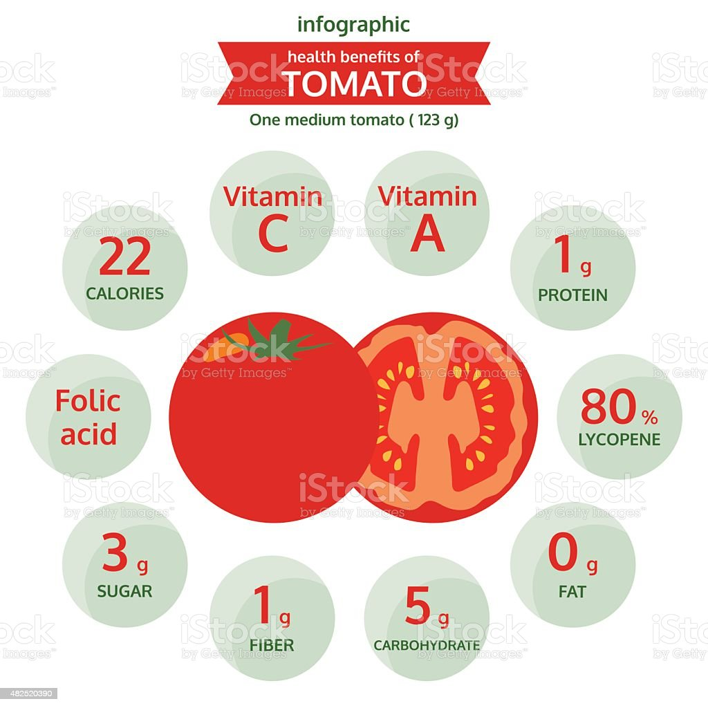 health benefits of tomato info graphic, vegetable vector illustration vector art illustration